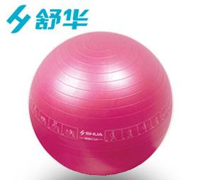 SH-34001B防爆瑜伽球(粉色)直径65CM