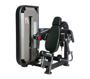SH-6807肱二头肌训练器